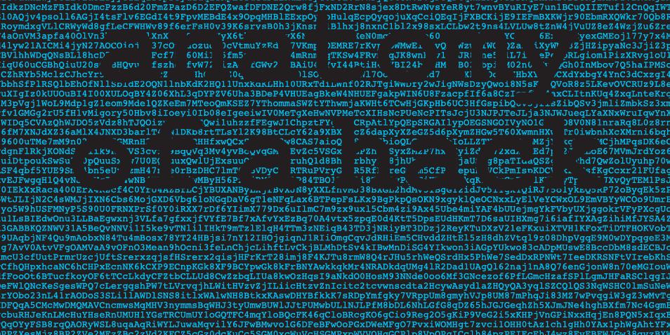 hacking954-orig